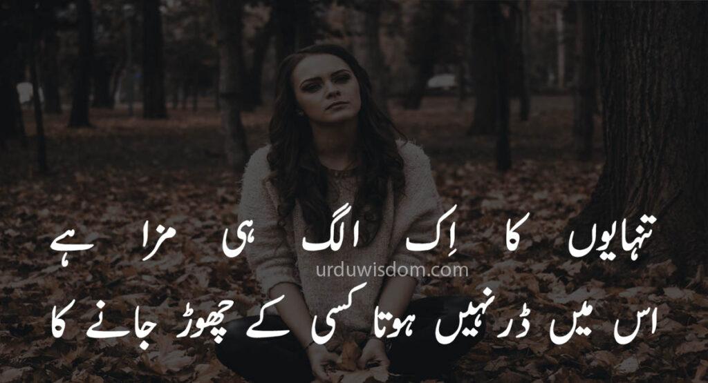 Poetry Love In Urdu 11