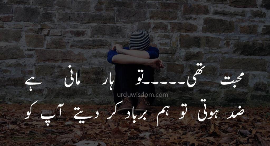 Poetry Love In Urdu 7