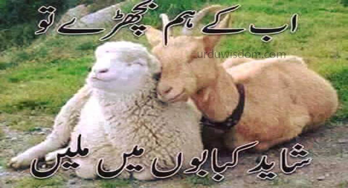 30 Best Eid Mubarak Wishes In Urdu 2021 16