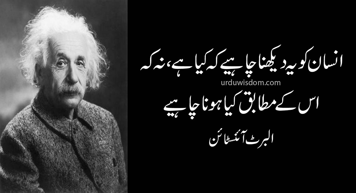 Top 20 Albert Einstein Quotes In Urdu 8
