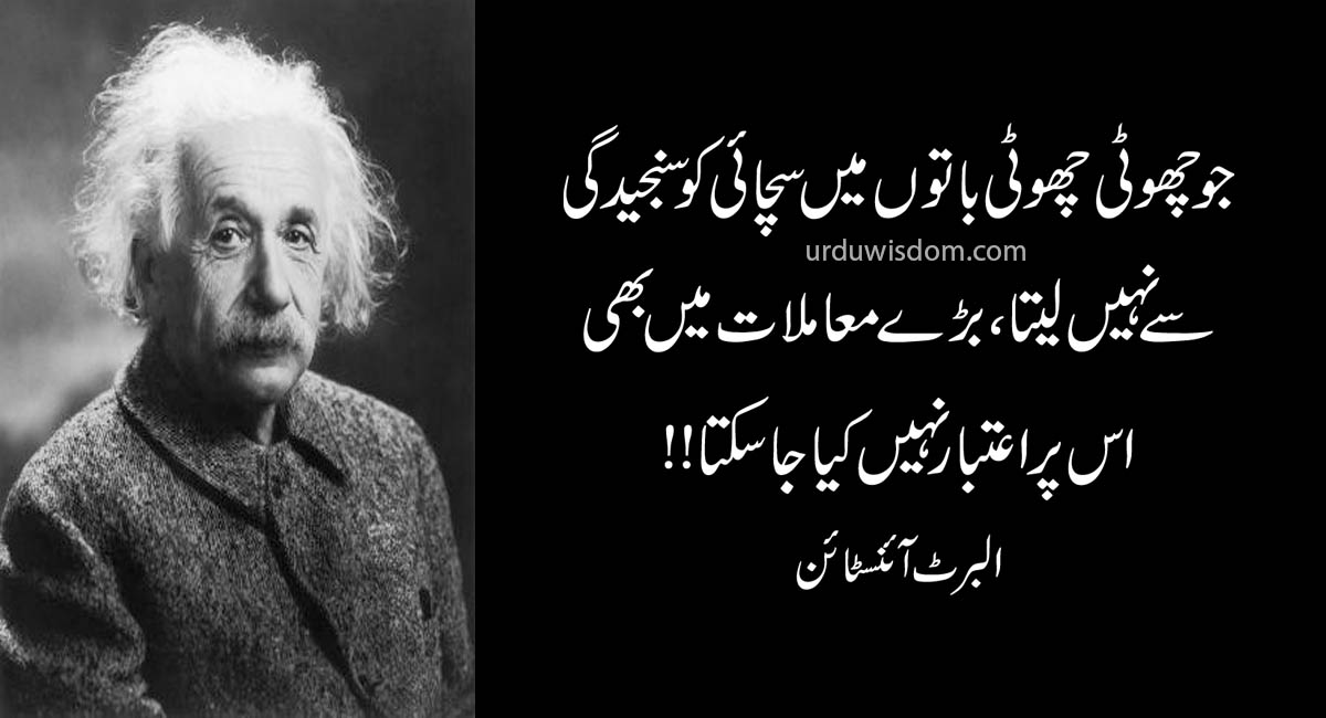 Top 20 Albert Einstein Quotes In Urdu 9
