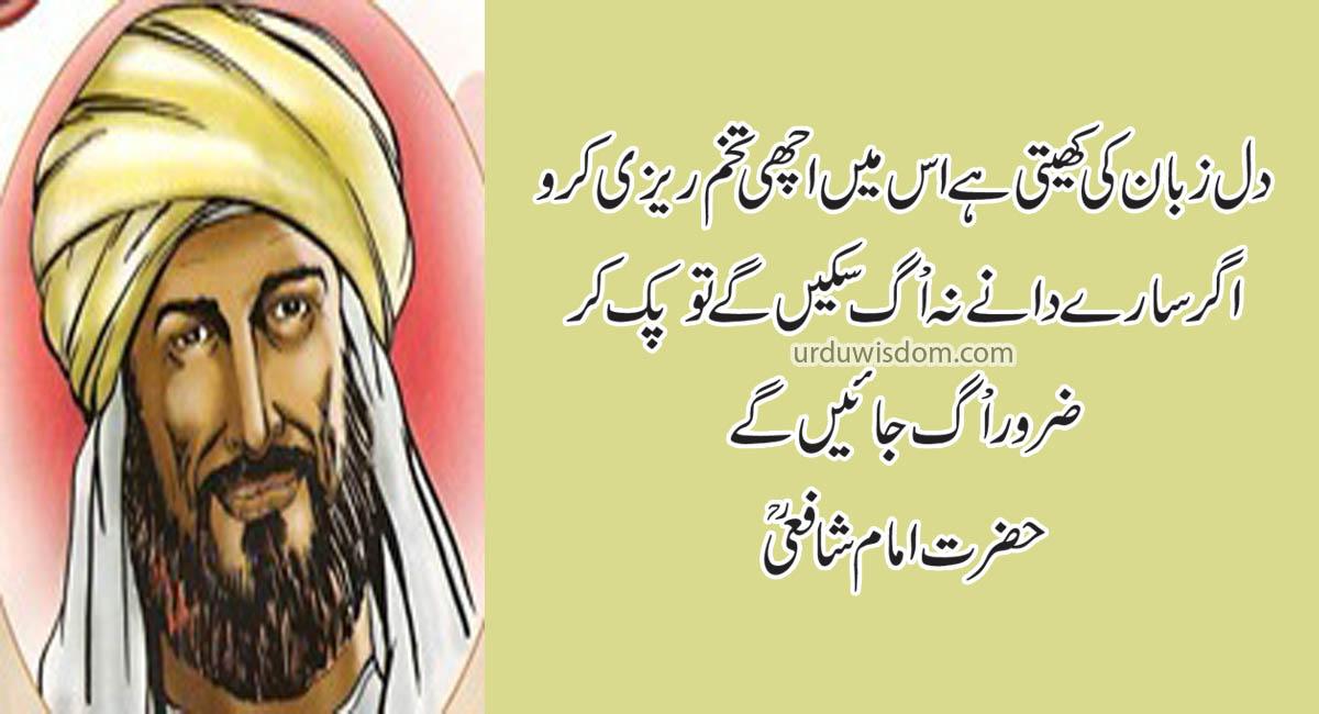 Top 20 Best Imam Shafi Quotes in Urdu 1