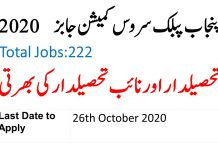 Tehsildar and Naib Tehsildar Jobs 2020