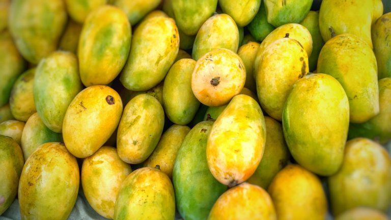 Mangoes in Pakistan